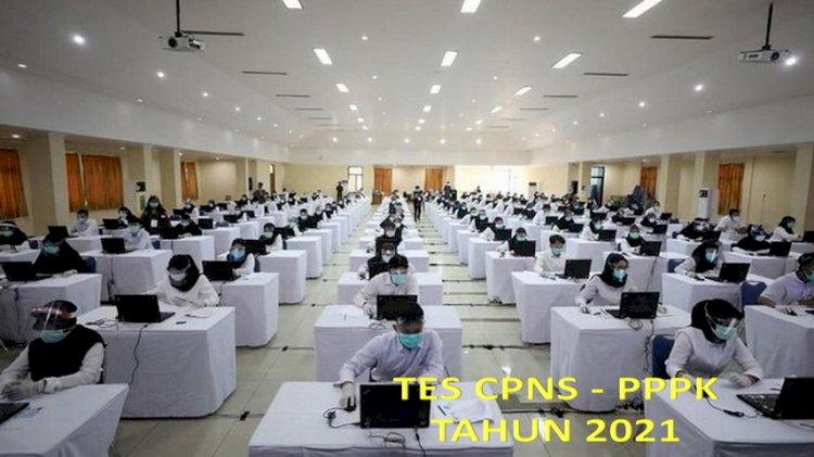 Tes CPNS-PPPK: Hasil Lolos Seleksi Administrasi 2-3 Agustus di Link Berikut dan Pelajari Alurnya