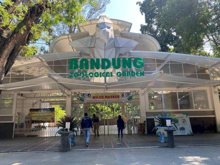 Meski Belum Lakukan Tes Covid-19, Pihak Kebun Binatang Bandung Pastikan Satwanya Sehat