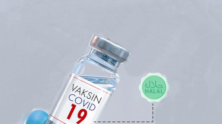 Meski tak Bersertifikat Halal, MUI Perbolehkan Tiga vaksin ini Dipakai