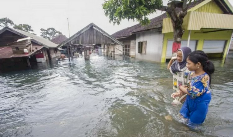 Bencana Alam di Indonesia Januari-Agustus Didominasi Hidrometeorologi