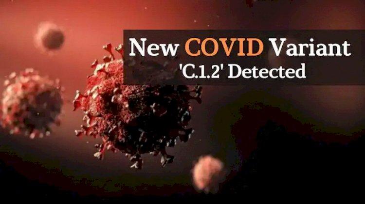 Varian Baru Virus Corona, C.1.2 Muncul di Afrika Selatan