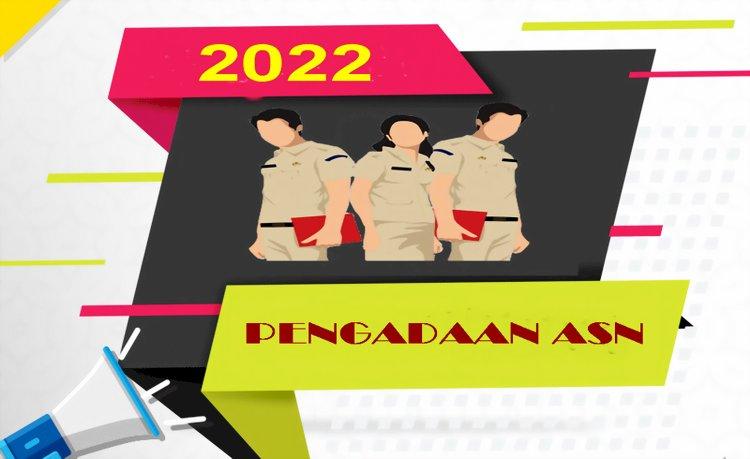 Pengadaan ASN pada 2022 Hanya untuk Formasi PPPK