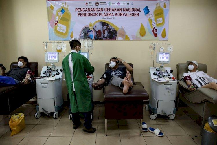 Terapi Plasma Konvalesen Diterapkan di 108 Rumah Sakit di Indonesia