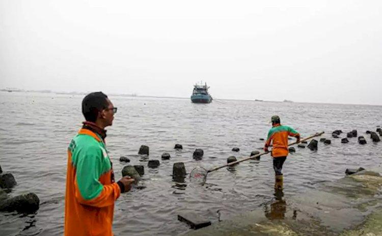 Walhi Nilai Pemprov DKI Lalai Terkait Temuan Kandungan Paracetamol di Teluk Jakarta