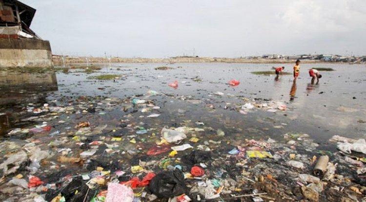 KLHK Didesak Bentuk Tim Khusus Selidiki Pencemaran di Teluk Jakarta